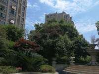 紫汀盛园一楼110平豪华3室2厅2卫五小学区