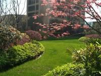 出售绿城 蘭园3室2厅2卫139平米190万住宅
