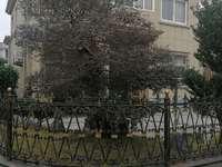 大红鹰家园单体别墅260平精装外墙全新
