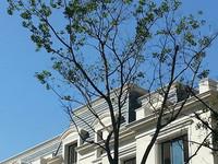 出售半岛康桥三室二厅二卫140平方210万
