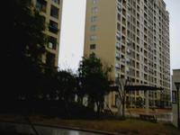 丹河路2楼132平毛坯3室2卫110万首付约30万六小学区