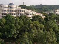 出租文景苑3室2厅2卫105平米2200元/月住宅
