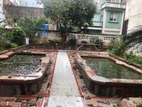 花园池塘套房出租
