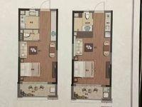 出售绿城 蘭园1室1厅1卫46平米71万住宅